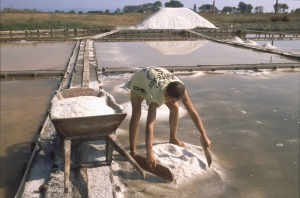 Pomorie- The Salt Museum and The Salt Works